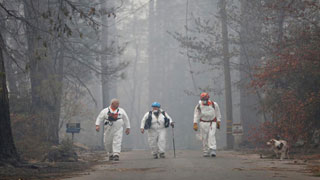 Search on for 1,276 missing in California wildfire