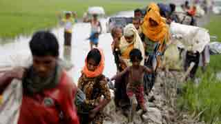 Myanmar continues Rohingya ethnic cleansing: US