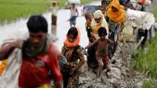 Canada lawmakers declare Rohingya killings 'genocide'