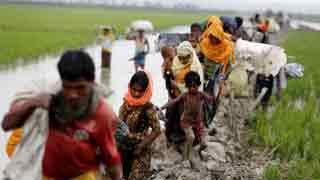 Govt to start Rohingya relocation to island in June