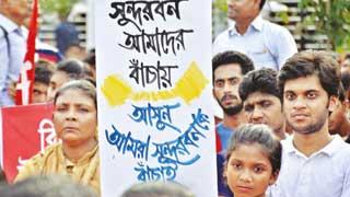 190 establishments within 10kms of Sundarbans: Report