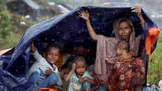 Govt to issue special visa for relief workers in Rohingya camps: Hasina