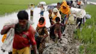 Myanmar not ready for return of Rohingya refugees: UN official