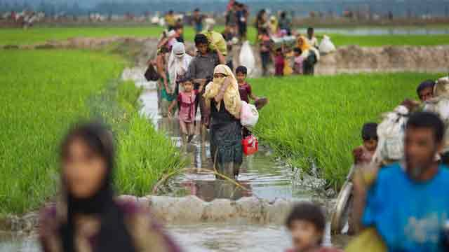Rohingya return deal needs to be monitored by int'l community