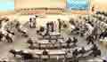 আগামী নির্বাচনে বাংলাদেশে মানবাধিকার পরিস্থিতির অবনতির আশংকা