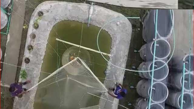 ঘরের মধ্যে মাছ চাষ করে সাফল্যের অনন্য নজির