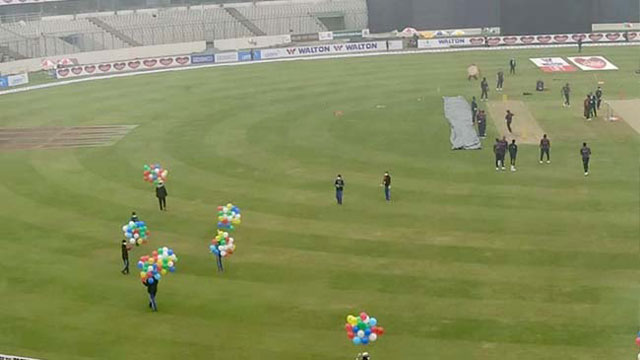 Fizz bags his second as play resumes after rain interruption
