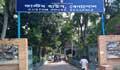 বেনাপোল কাস্টমে ২০ কেজি স্বর্ণ চুরি: তদন্ত কমিটি গঠন, ৫ কর্মকর্তা আটক
