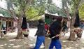 ঝিনাইদহে গাছে ঝুলিয়ে যুবককে নির্যাতন, ২ আ'লীগ নেতা গ্রেফতার