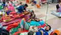 Minor girl dies of dengue in Khulna, 788 new patients hospitalised