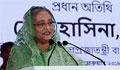 Hasina for multipurpose use of tea