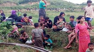 রোহিঙ্গাদের জরুরি সহায়তা আহ্বান বিশ্ব স্বাস্থ্য সংস্থার
