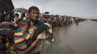 রোহিঙ্গা নিপীড়ন: মিয়ানমারের বিচারের দাবি পাঁচ দেশের ১৩২ এমপির