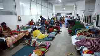 ২৪ ঘণ্টায় ১০৯৬ ডেঙ্গু রোগী হাসপাতালে ভর্তি