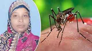 Housewife dies of dengue in Madaripur