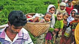 Myanmar vows early Rohingya return