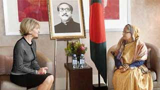 Keep up pressure on Myanmar from different levels: Hasina