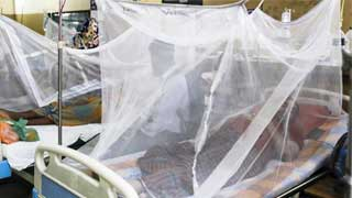 902 more hospitalized for dengue in 24hrs