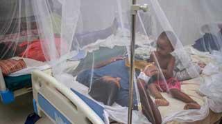 4 more dengue patients die