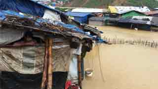 IOM in desperate need of funds to help Rohingyas