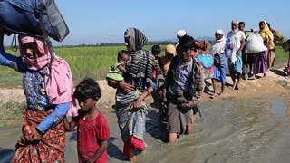 UN experts condemn Rohingya deportation by India