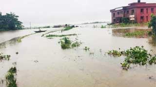 Teesta, Dharla flow above danger level