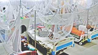 3 more die of dengue, 1,157 more hospitalised