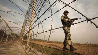 Bangladeshi gunned down by BSF along Thakurgaon border