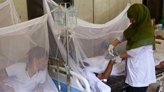 Dengue outbreak: Over 800 hospitalised in 24 hrs