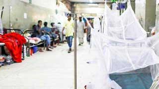 Dengue patients three times outside Dhaka
