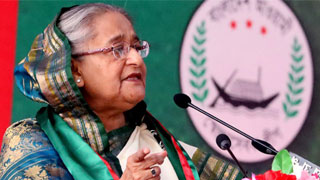 Want to see if any plot behind onion price surge: Hasina