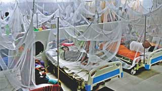 783 more hospitalized for dengue in 24hrs