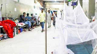 Hospitals admit 527 new dengue patients in 24hrs