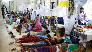 203 dengue patients hospitalised across Bangladesh