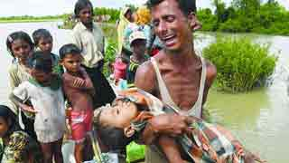 Rohingyas face various protection risks: UNHCR