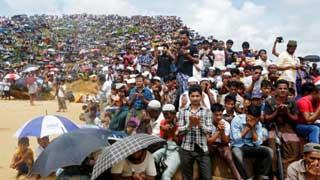 Govt has no diplomatic success in Rohingya crisis: BNP