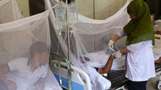 3 more dengue patients die