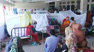 615 new dengue patients hospitalised across country