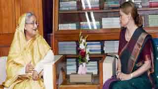Rohingya presence a massive socioeconomic pressure: Hasina
