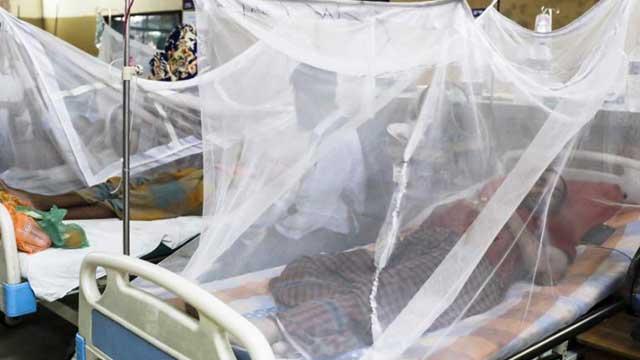 Govt updates dengue death toll to 104