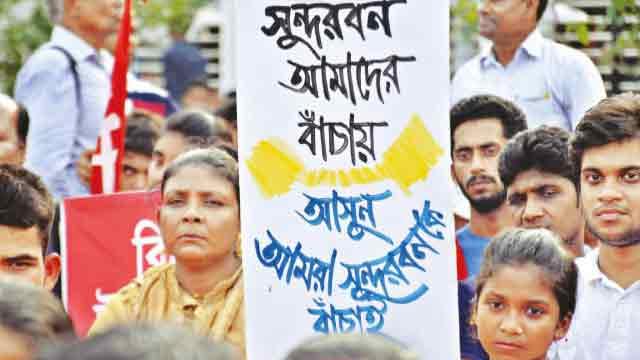 UN calls on Dhaka to stop industrialisation in Sundarbans