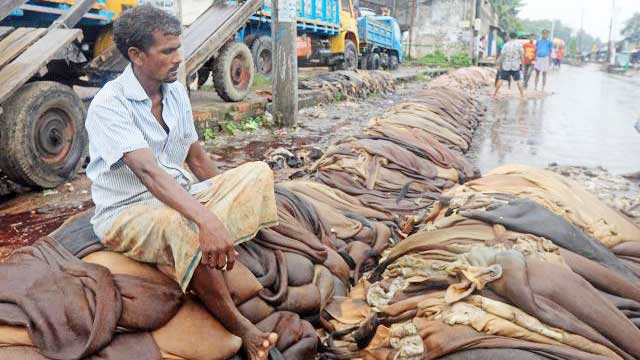 Govt decides to allow export of raw hide