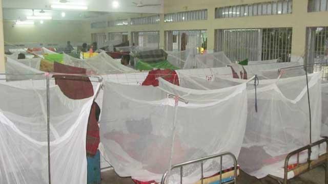 Five more die of dengue