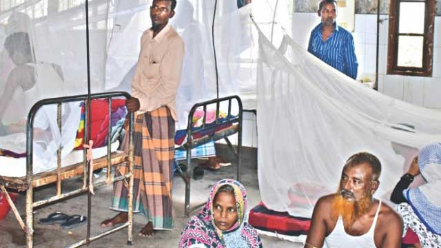 One die, 248 dengue patients hospitalised in 24 hrs