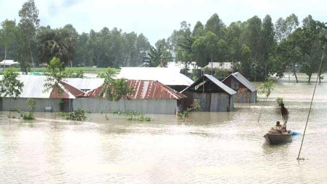 Fish worth Tk21 crore wash away in Sunamganj flood